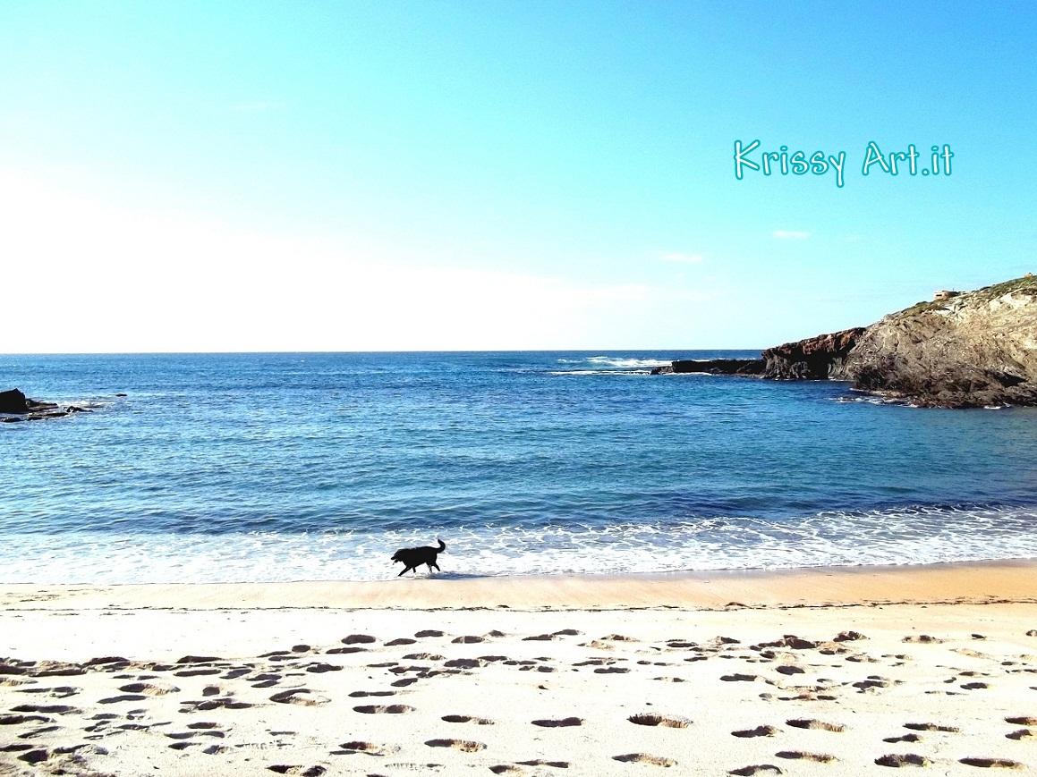 Cane a Porto Palmas - Sardegna
